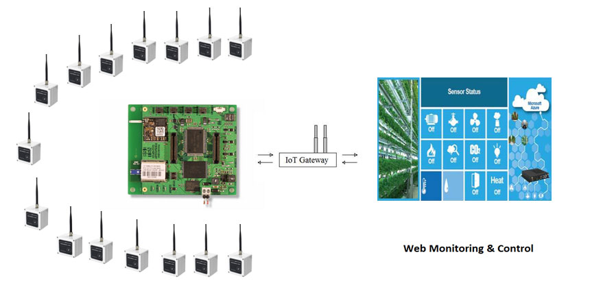 Wireless sensor node